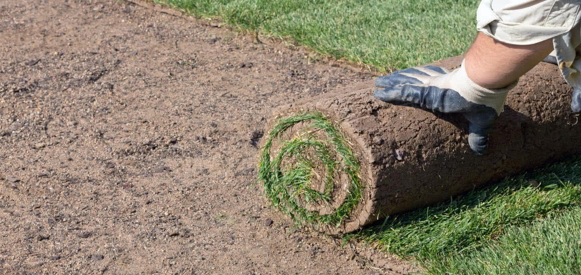Image for Lawn Installation Guide